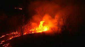 Incêndio atinge o Horto de Juazeiro do Norte, no Ceará