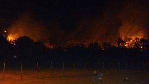 Incêndio atinge área de preservação em Barbalha