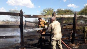 Área de vegetação e pasto são atingidos por incêndio na zona rural de Iguatu