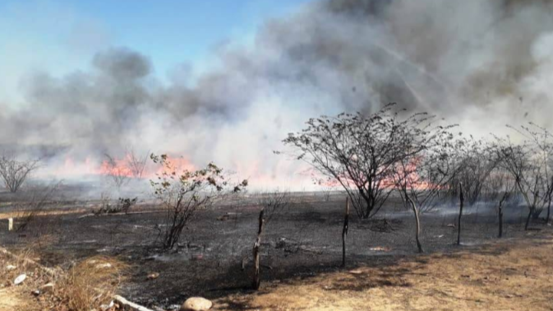 Ceará registra 85 ocorrências de incêndio em 9 cidades no mês de setembro