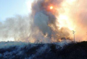Sobral tem ocorrências de incêndio em vegetação próximo a empresas e centro educativo