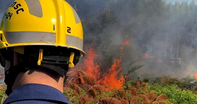 Ministério do Meio Ambiente quer reduzir meta de combate a incêndios ilegais