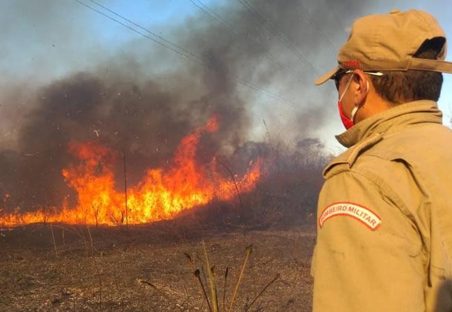 Bombeiros combatem incêndios em vegetação em quatro municípios das regiões Norte e Inhamuns