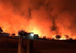 Incêndio em vegetação seca chega perto de casas em duas comunidades de Canindé