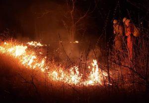 Incêndio de grandes proporções atinge área próxima a residências e granja em Santa Quitéria