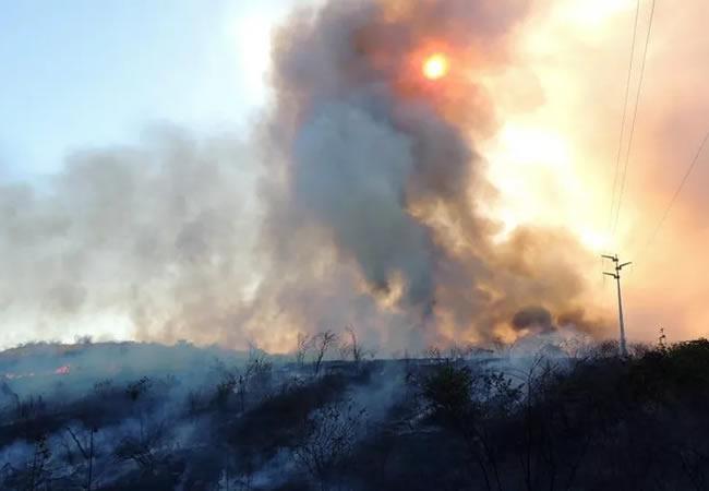 Ceará já registrou mais de cinco mil focos de incêndios em 2020