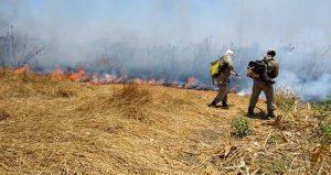 Ceará: Em apenas uma semana, outubro já tem quase 50% do número de incêndios registrados em setembro