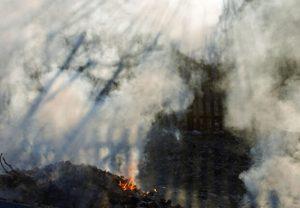 Incêndios recentes reforçam a importância do cuidado no manejo do fogo em áreas rurais