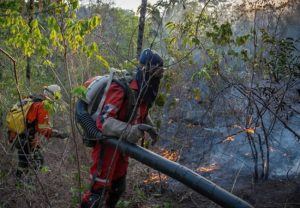 ONG Associação Rede Contra Fogo se dedica a preparar brigadistas para combater incêndios na Chapada dos Veadeiros