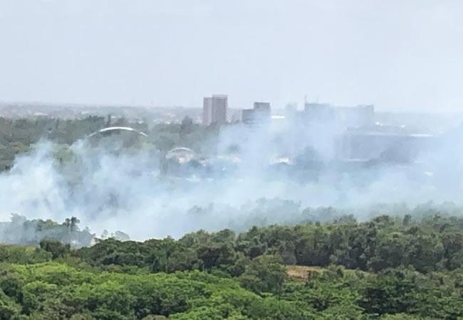 Incêndio atinge Parque do Cocó neste domingo