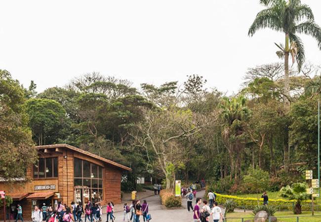 A estratégia de combate a incêndio do Parque Zoológico de São Paulo: preservando mata e salvando vidas