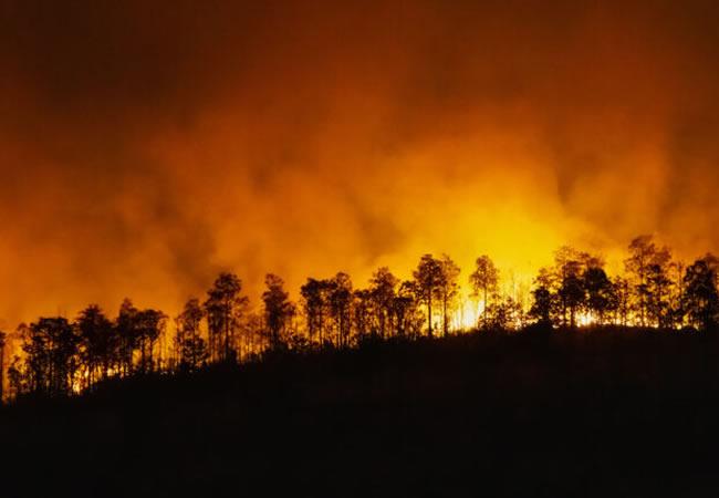 Pesquisadores desenvolvem aparelho mais barato para combater incêndios na Amazônia
